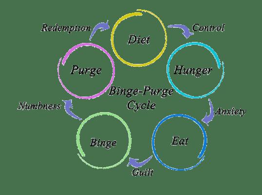 diagram illustration for binge-purge cycle in eating disorders