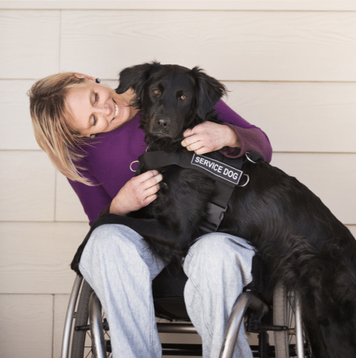 woman in wheelchair hugging her service dog